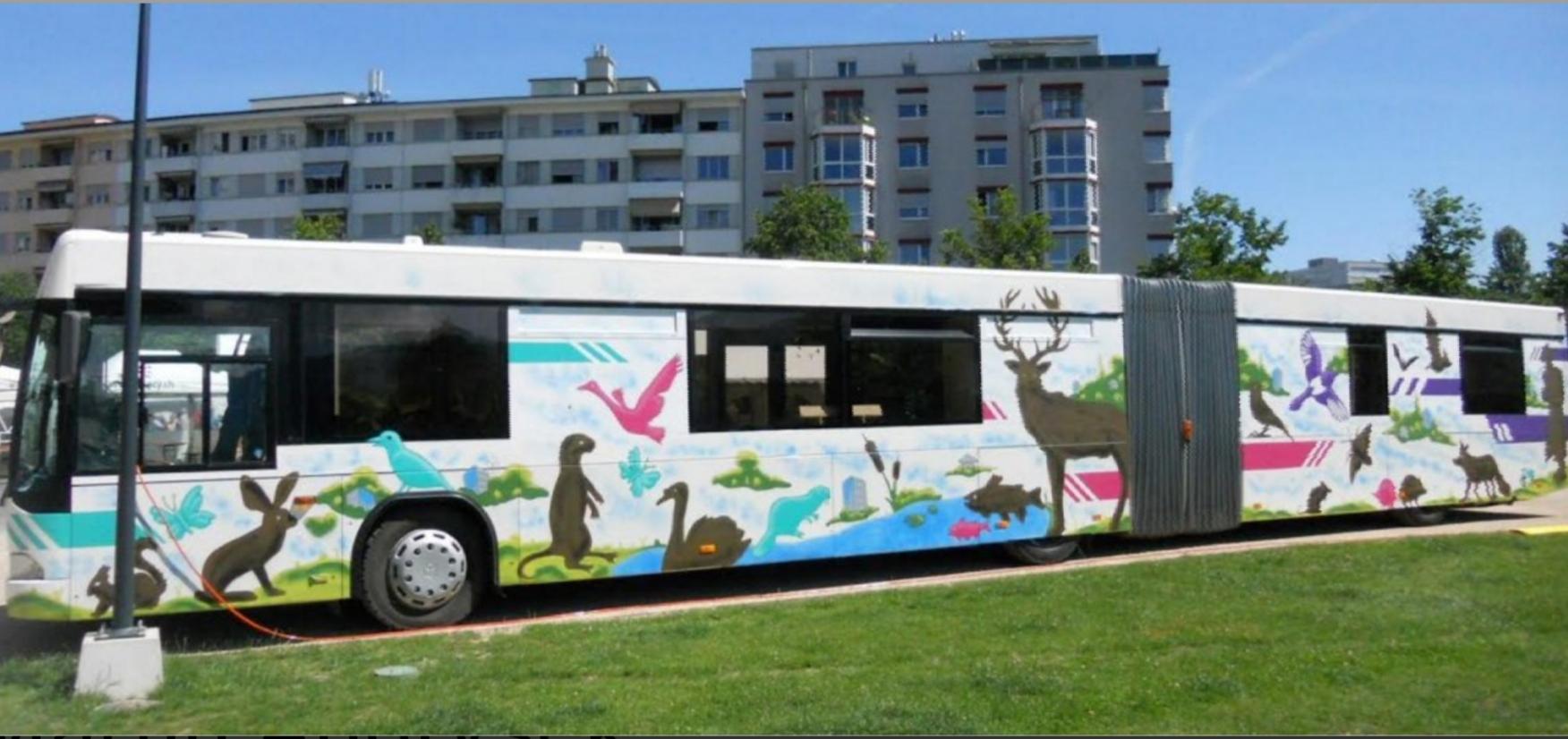 2019 02 11 bus exterieur