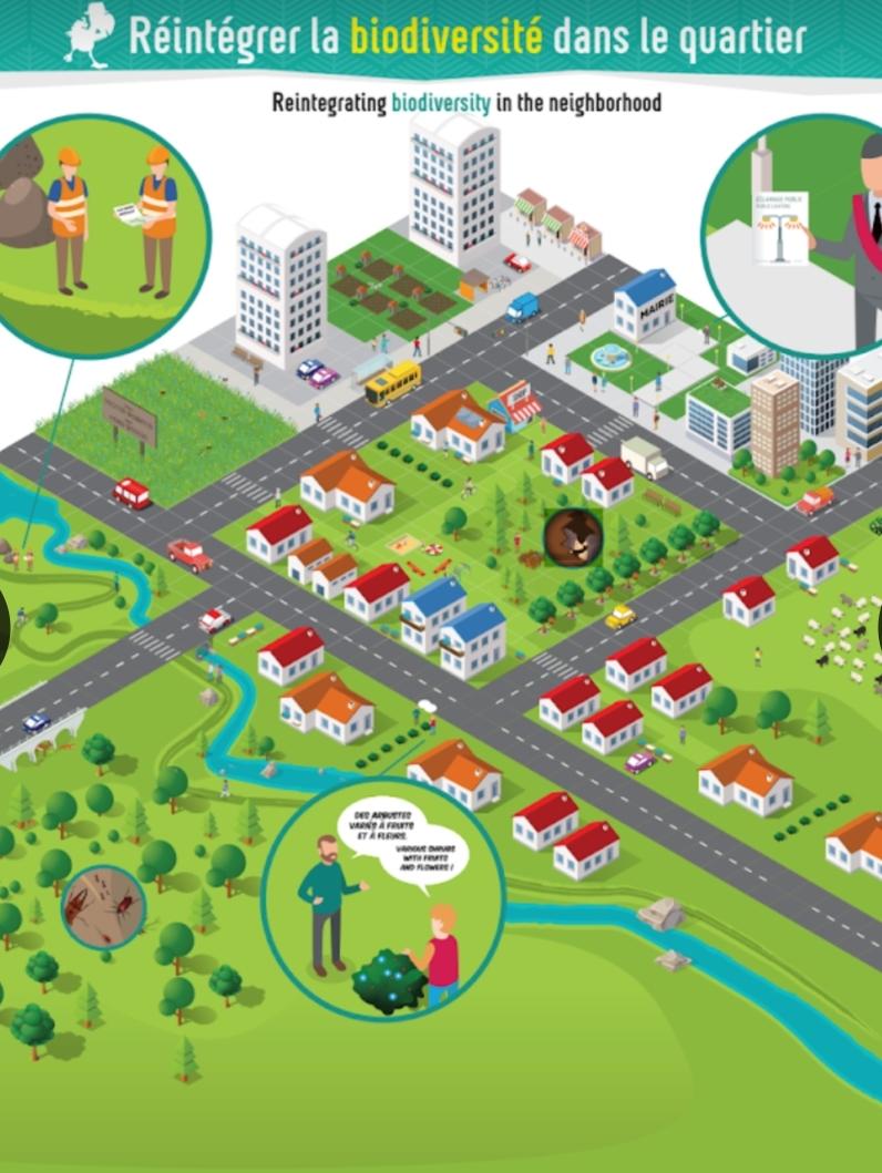 2019 02 11 panneau ecosysteme urbain
